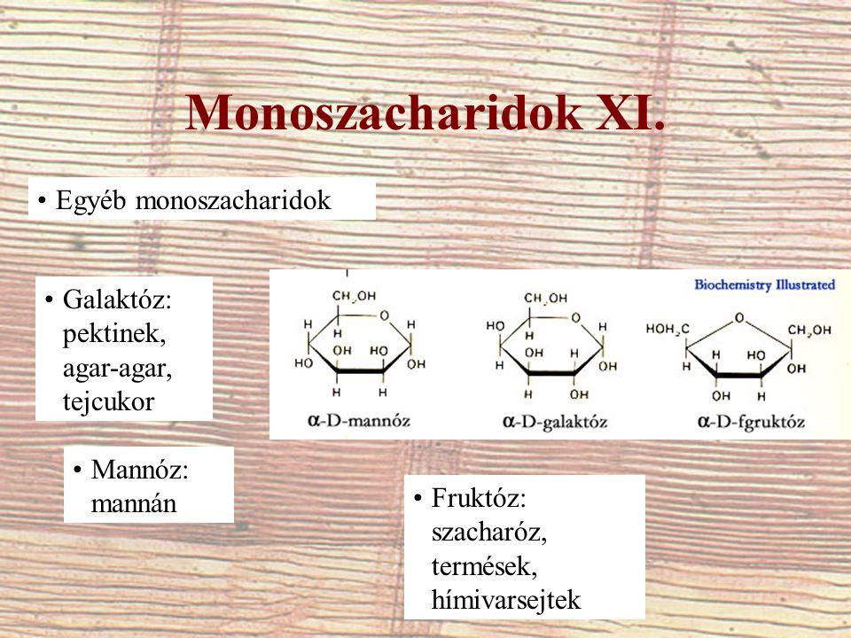 Monoszacharidok XI. Egyéb monoszacharidok Galaktóz: pektinek, agar-agar, tejcukor Mannóz: mannán Fruktóz: szacharóz, termések, hímivarsejtek