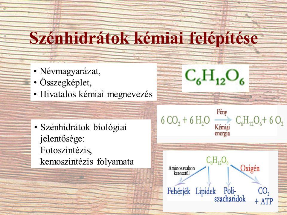 Szénhidrátok kémiai felépítése Névmagyarázat, Összegképlet, Hivatalos kémiai megnevezés Szénhidrátok biológiai jelentősége: Fotoszintézis, kemoszintéz
