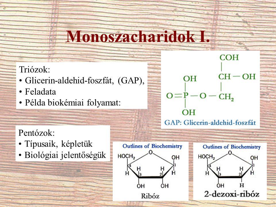 Monoszacharidok I. Triózok: Glicerin-aldehid-foszfát, (GAP), Feladata Példa biokémiai folyamat: Pentózok: Típusaik, képletük Biológiai jelentőségük