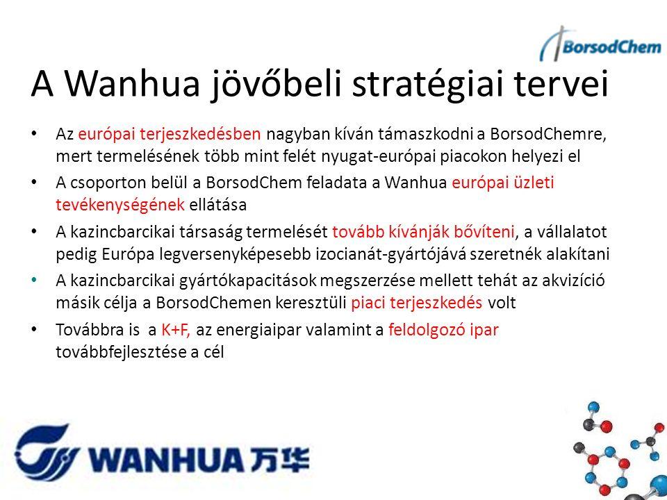 A Wanhua jövőbeli stratégiai tervei Az európai terjeszkedésben nagyban kíván támaszkodni a BorsodChemre, mert termelésének több mint felét nyugat-európai piacokon helyezi el A csoporton belül a BorsodChem feladata a Wanhua európai üzleti tevékenységének ellátása A kazincbarcikai társaság termelését tovább kívánják bővíteni, a vállalatot pedig Európa legversenyképesebb izocianát-gyártójává szeretnék alakítani A kazincbarcikai gyártókapacitások megszerzése mellett tehát az akvizíció másik célja a BorsodChemen keresztüli piaci terjeszkedés volt Továbbra is a K+F, az energiaipar valamint a feldolgozó ipar továbbfejlesztése a cél
