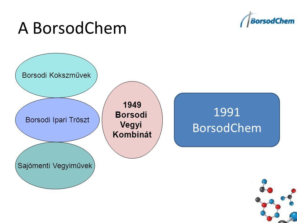 A BorsodChem Borsodi Kokszművek Borsodi Ipari Tröszt Sajómenti Vegyiművek 1949 Borsodi Vegyi Kombinát 1991 BorsodChem