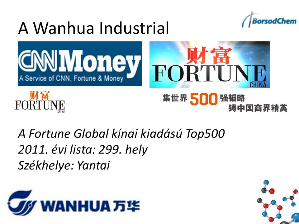A Wanhua Industrial A Fortune Global kínai kiadású Top500 2011.