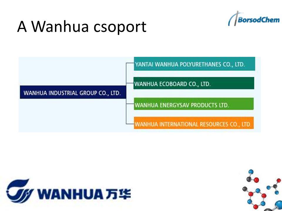 A Wanhua csoport