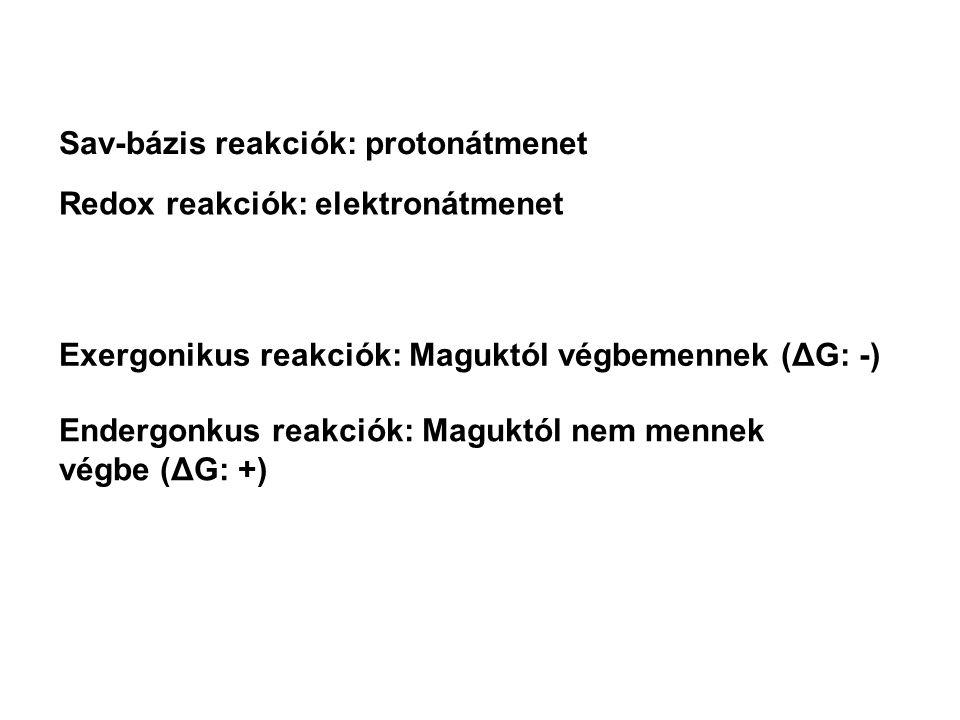 Sav-bázis reakciók: protonátmenet Redox reakciók: elektronátmenet Exergonikus reakciók: Maguktól végbemennek (ΔG: -) Endergonkus reakciók: Maguktól nem mennek végbe (ΔG: +)