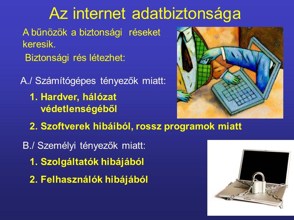 Az internet adatbiztonsága 1.Szolgáltatók hibájából 2.Felhasználók hibájából A bűnözök a biztonsági réseket keresik.