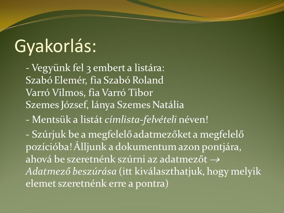 Gyakorlás: - Vegyünk fel 3 embert a listára: Szabó Elemér, fia Szabó Roland Varró Vilmos, fia Varró Tibor Szemes József, lánya Szemes Natália - Mentsük a listát címlista-felvételi néven.