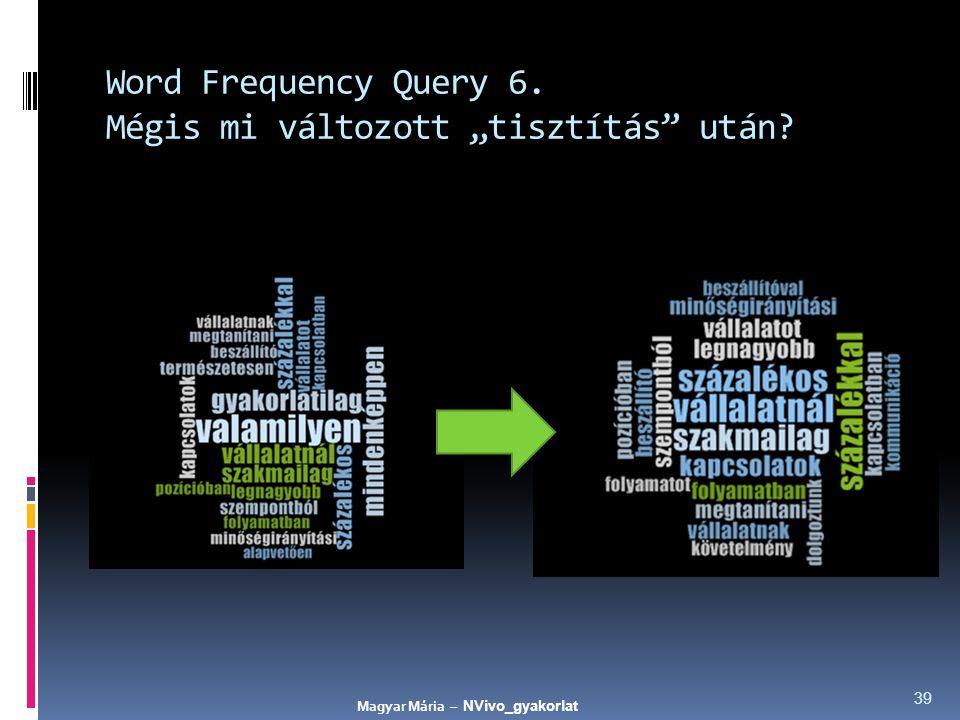 """Word Frequency Query 6. Mégis mi változott """"tisztítás"""" után? 39 Magyar Mária – NVivo_gyakorlat"""