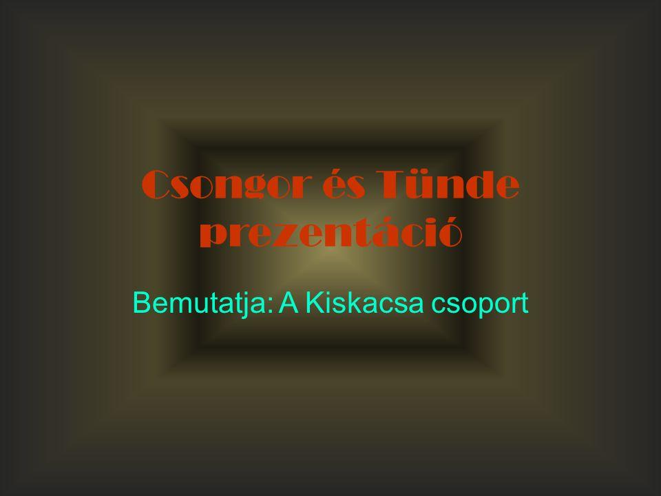 Csongor és Tünde prezentáció Bemutatja: A Kiskacsa csoport