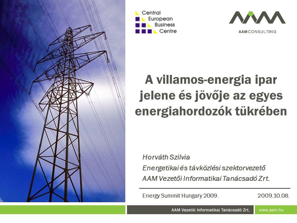 A villamos-energia ipar jelene és jövője az egyes energiahordozók tükrében Horváth Szilvia Energetikai és távközlési szektorvezető AAM Vezetői Informatikai Tanácsadó Zrt.