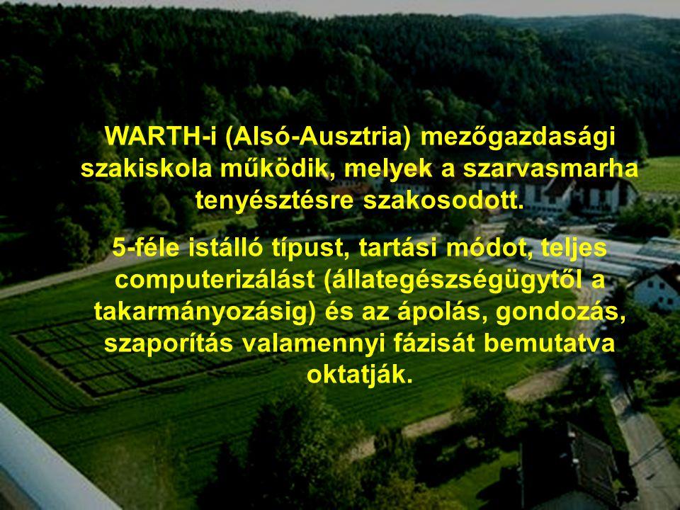 5 A gyakorlati oktatás ágazatai a pyhrai Mezőgazdasági Szakiskolában (Phyra, Ausztria ) WARTH-i (Alsó-Ausztria) mezőgazdasági szakiskola működik, melyek a szarvasmarha tenyésztésre szakosodott.