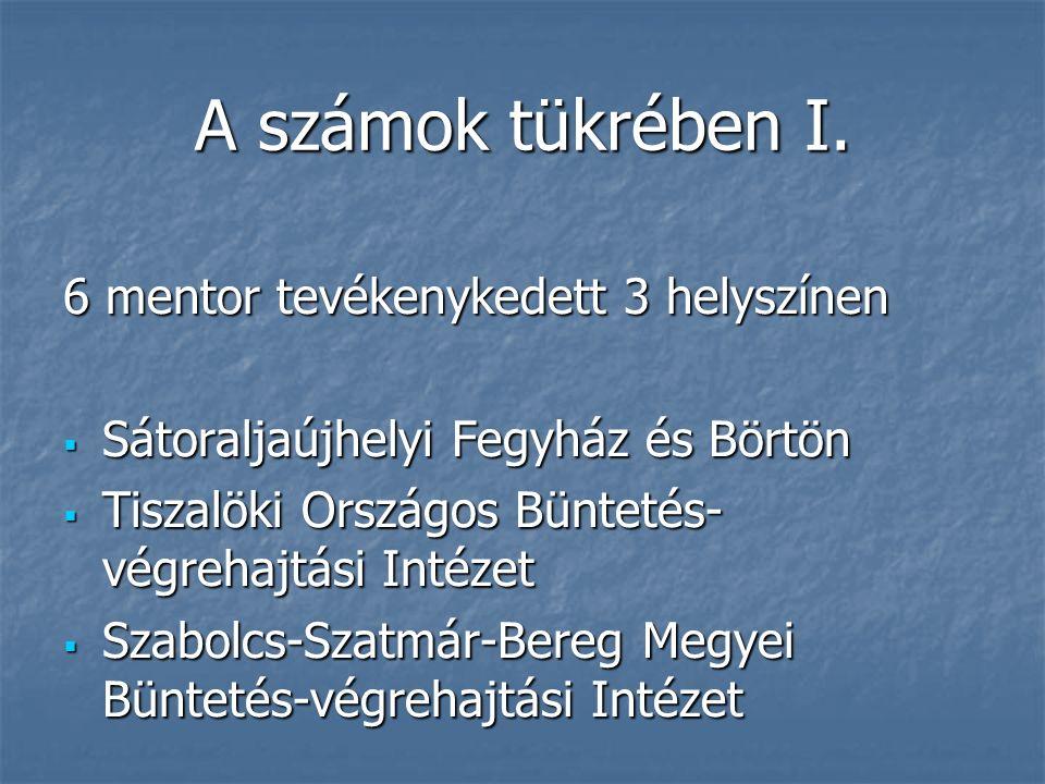 6 mentor tevékenykedett 3 helyszínen  Sátoraljaújhelyi Fegyház és Börtön  Tiszalöki Országos Büntetés- végrehajtási Intézet  Szabolcs-Szatmár-Bereg Megyei Büntetés-végrehajtási Intézet A számok tükrében I.