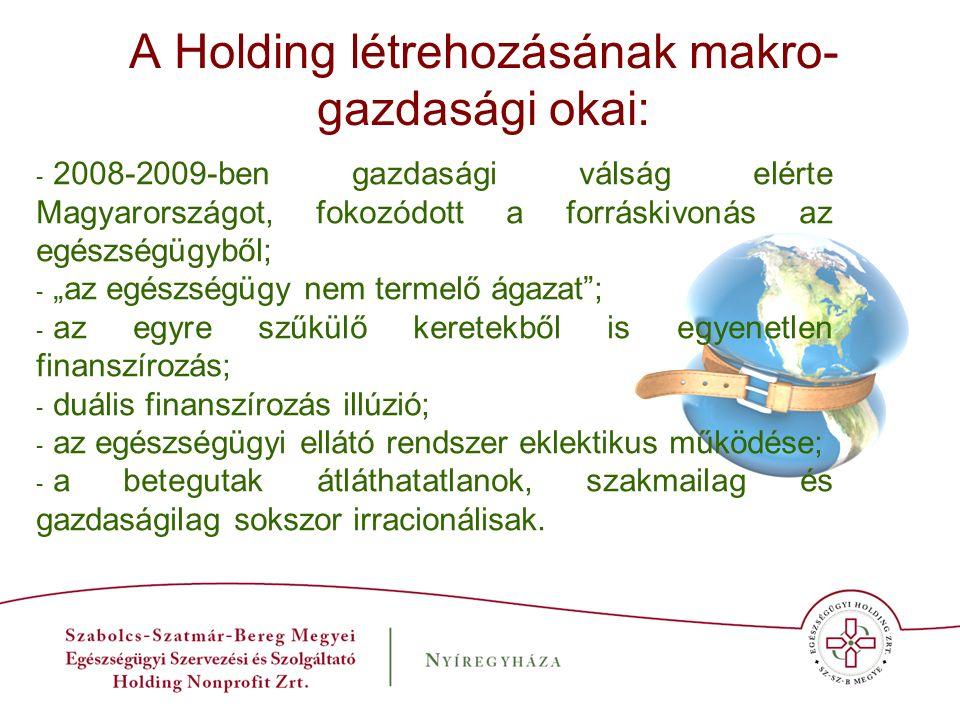 A Holding létrehozásának makro- gazdasági okai: - 2008-2009-ben gazdasági válság elérte Magyarországot, fokozódott a forráskivonás az egészségügyből;