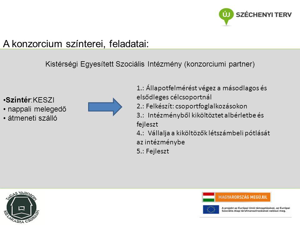 Segítőház Alapítvány (konzorciumi partner) Színtér: Utcai Szociális Szolgálatok Győr A konzorcium színterei, feladatai: 1.:Állapotfelmérést végez az elsődleges célcsoportnál (Utca) 2.: Felkészít: egyéni és csoportos fejlesztések 3.:Költöztet (egyéni és csoportos fejlesztéseket követően önálló lakhatásban helyez el embereket) 4.: biztosítja az integrációs Team munka feltételeit, az intézményből (átmeneti szálló, rehabilitációs otthon) kiköltözötteket létszámában