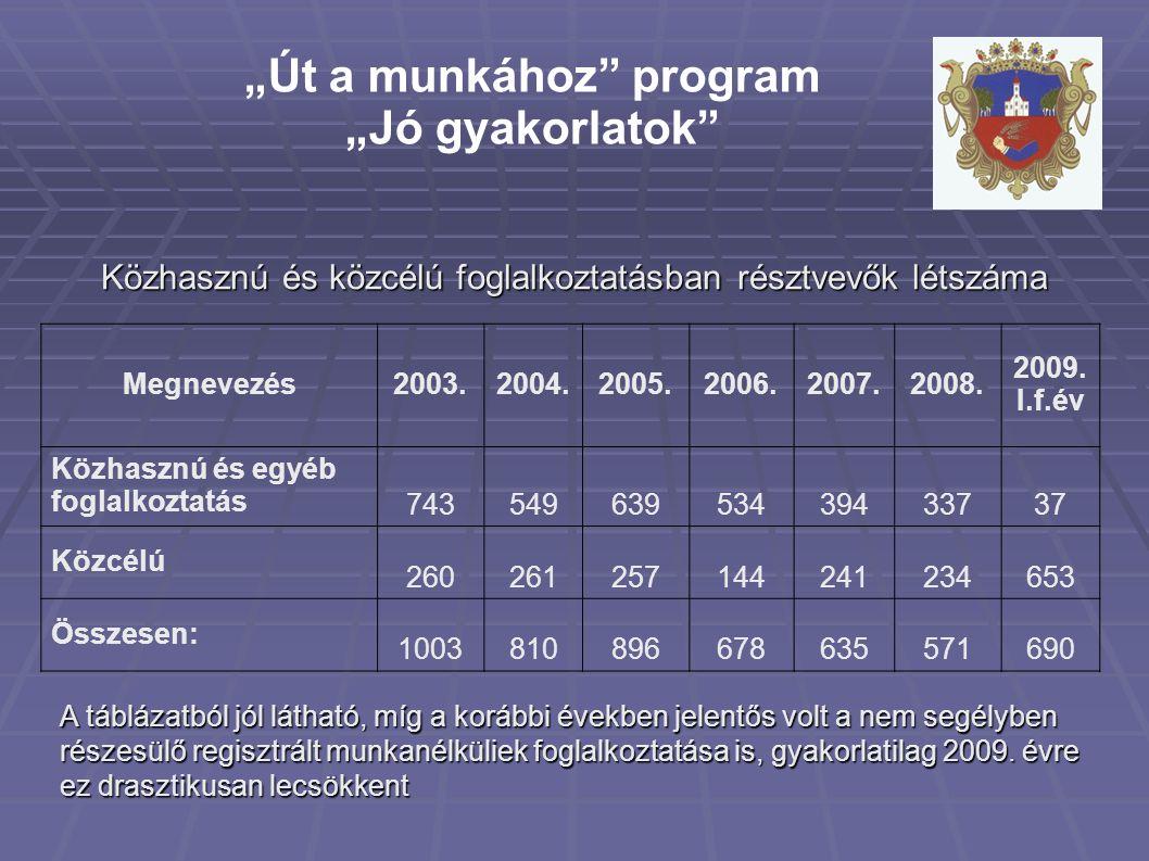 """""""Út a munkához program """"Jó gyakorlatok Megnevezés2003.2004.2005.2006.2007.2008."""