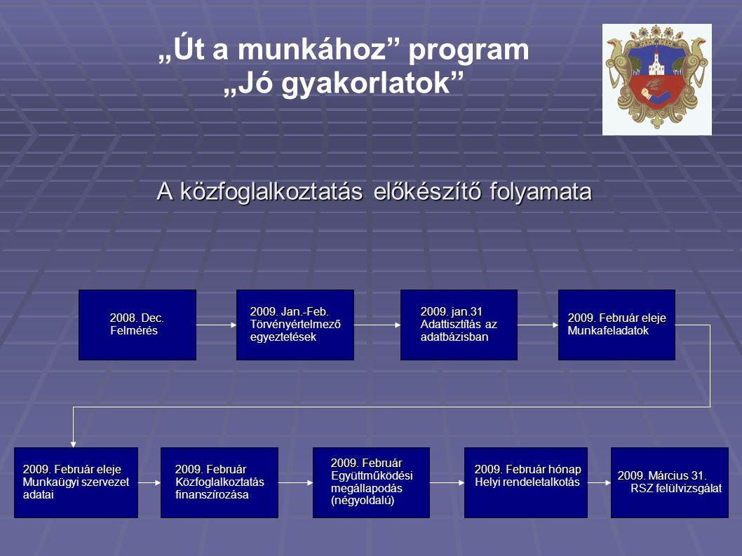 A közfoglalkoztatás előkészítő folyamata 2009. Február eleje Munkaügyi szervezet adatai 2009.