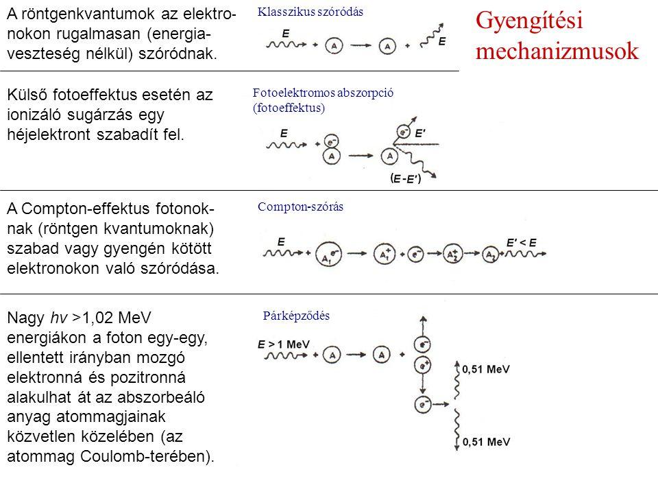 Gyengítési mechanizmusok A röntgenkvantumok az elektro- nokon rugalmasan (energia- veszteség nélkül) szóródnak.