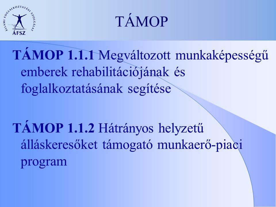 TÁMOP TÁMOP 1.1.1 Megváltozott munkaképességű emberek rehabilitációjának és foglalkoztatásának segítése TÁMOP 1.1.2 Hátrányos helyzetű álláskeresőket támogató munkaerő-piaci program