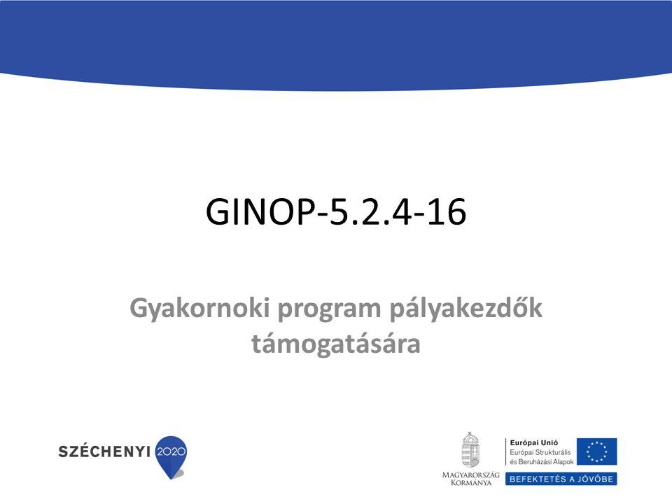 GINOP-5.2.4-16 Gyakornoki program pályakezdők támogatására