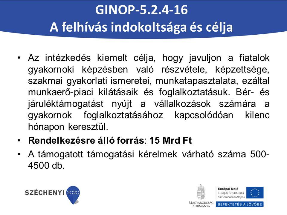 GINOP-5.2.4-16 A felhívás indokoltsága és célja Az intézkedés kiemelt célja, hogy javuljon a fiatalok gyakornoki képzésben való részvétele, képzettsége, szakmai gyakorlati ismeretei, munkatapasztalata, ezáltal munkaerő-piaci kilátásaik és foglalkoztatásuk.