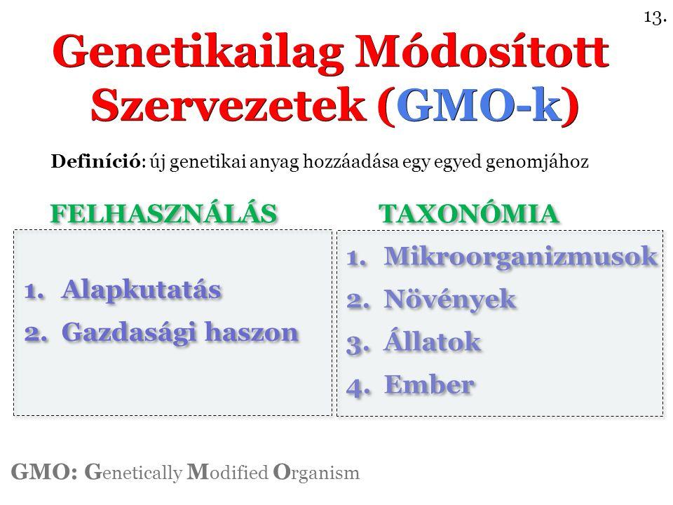 1.Mikroorganizmusok 2.Növények 3.Állatok 4.Ember 1.Mikroorganizmusok 2.Növények 3.Állatok 4.Ember Genetikailag Módosított Szervezetek (GMO-k) Genetikailag Módosított Szervezetek (GMO-k) 1.Alapkutatás 2.Gazdasági haszon 1.Alapkutatás 2.Gazdasági haszon GMO: G enetically M odified O rganism Definíció: új genetikai anyag hozzáadása egy egyed genomjához 13.
