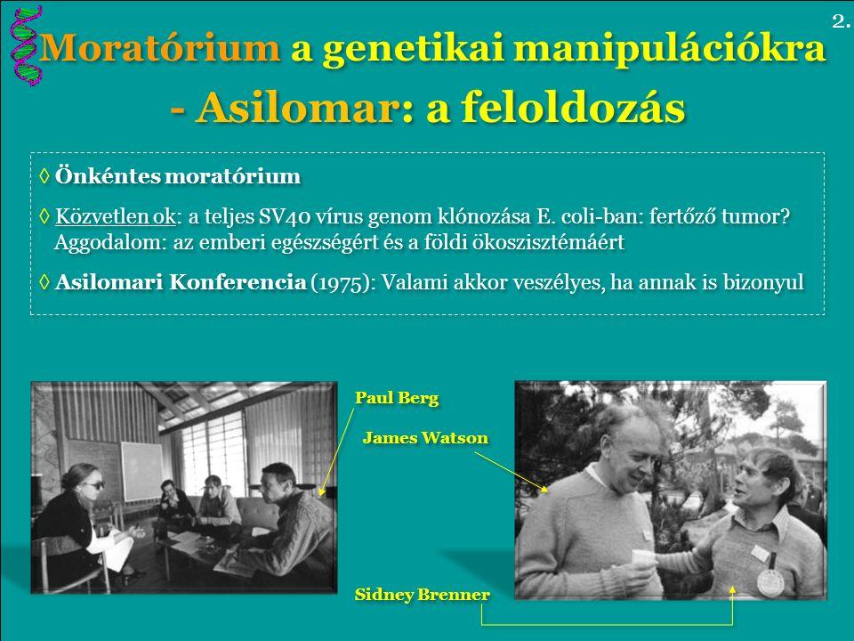 Moratórium a genetikai manipulációkra - Asilomar: a feloldozás Moratórium a genetikai manipulációkra - Asilomar: a feloldozás ◊ Önkéntes moratórium ◊ Közvetlen ok: a teljes SV40 vírus genom klónozása E.
