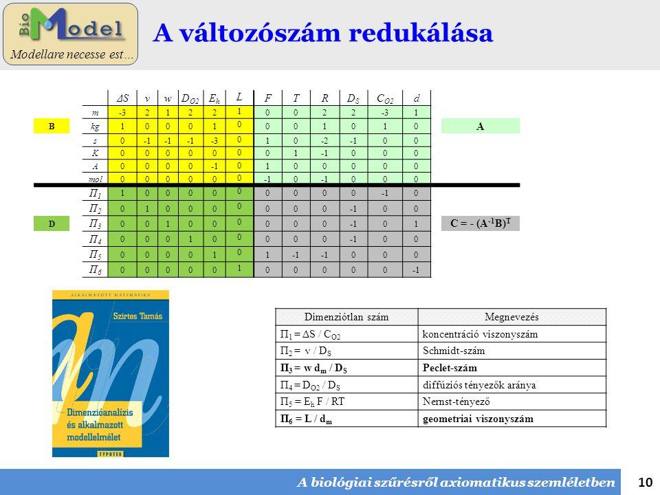 10 Modellare necesse est… A változószám redukálása A biológiai szűrésről axiomatikus szemléletben ΔSνwD O2 EhEh L FTRDSDS C O2 d m-32122 1 0022 1 B kg