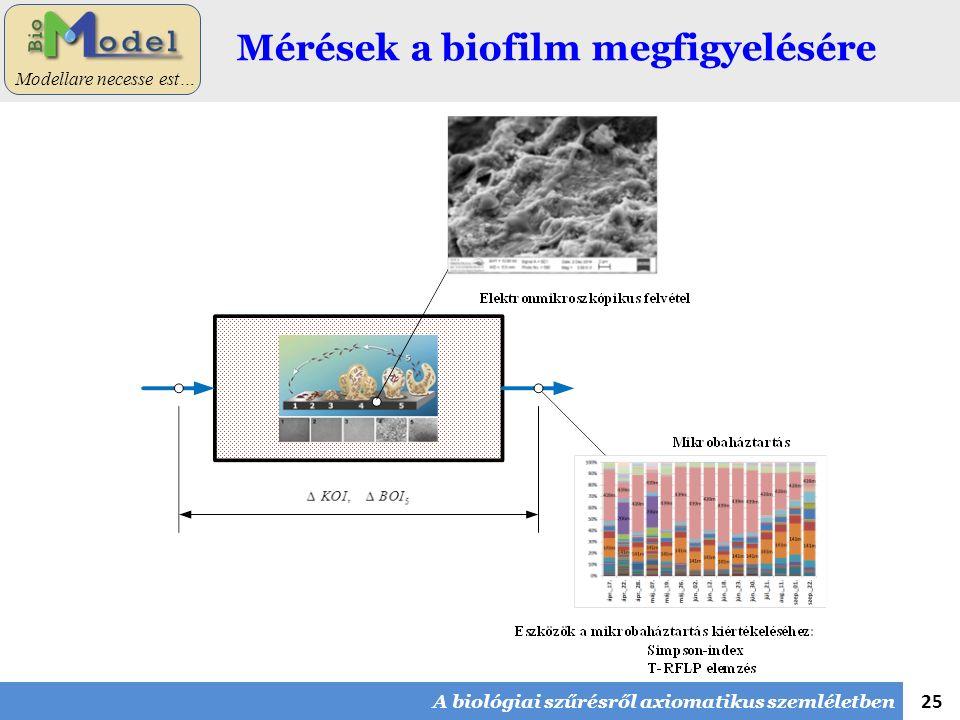 25 Modellare necesse est… Mérések a biofilm megfigyelésére A biológiai szűrésről axiomatikus szemléletben