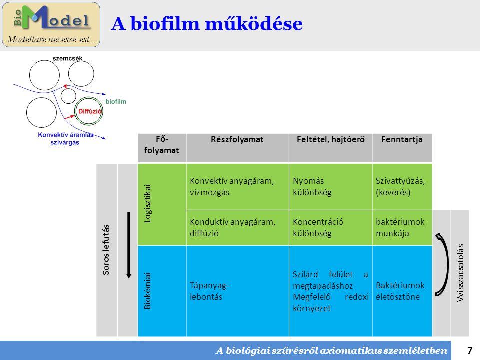 7 Modellare necesse est… A biofilm működése A biológiai szűrésről axiomatikus szemléletben Fő- folyamat RészfolyamatFeltétel, hajtóerőFenntartja Soros lefutás Logisztikai Konvektív anyagáram, vízmozgás Nyomás különbség Szivattyúzás, (keverés) Konduktív anyagáram, diffúzió Koncentráció különbség baktériumok munkája Vvisszacsatolás Biokémiai Tápanyag- lebontás Szilárd felület a megtapadáshoz Megfelelő redoxi környezet Baktériumok életösztöne