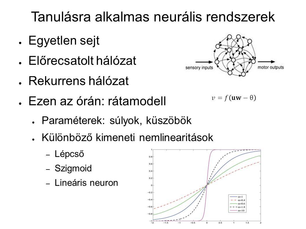 Tanulásra alkalmas neurális rendszerek ● Egyetlen sejt ● Előrecsatolt hálózat ● Rekurrens hálózat ● Ezen az órán: rátamodell ● Paraméterek: súlyok, kü