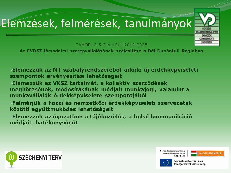 Elemzések, felmérések, tanulmányok TÁMOP -2-5-3-A-13/1-2013-0025 Az EVDSZ társadalmi szerepvállalásának szélesítése a Dél-Dunántúli Régióban  Elemezz