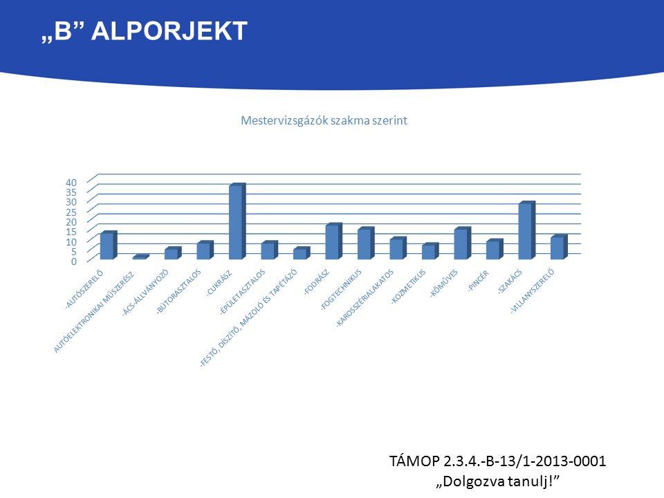 """""""B ALPORJEKT TÁMOP 2.3.4.-B-13/1-2013-0001 """"Dolgozva tanulj! - Autószerelő: 13 fő"""