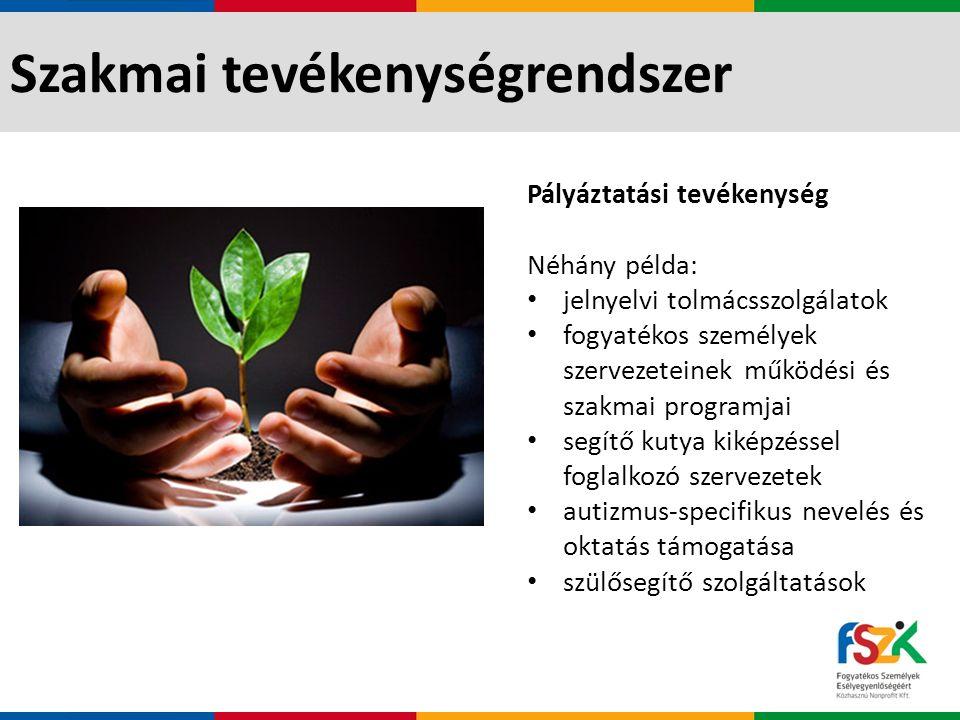 Szakmai tevékenységrendszer Szakértői, fejlesztői tevékenység: Néhány példa: nyilvános, akadálymentes tájékoztató felület létrehozása szakértői támogatás a Szent Lukács Görögkatolikus Szeretetszolgálat intézményrendszerében a súlyosan és halmozottan fogyatékos személyek élethelyzetére és ellátására vonatkozó kutatási terv kidolgozása