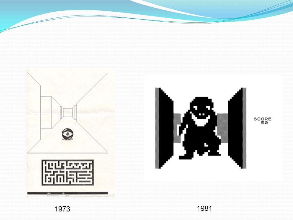 1973 1981