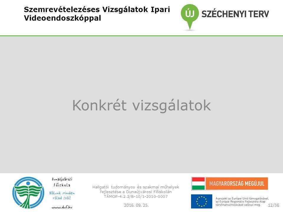 Szemrevételezéses Vizsgálatok Ipari Videoendoszkóppal Konkrét vizsgálatok 2016.