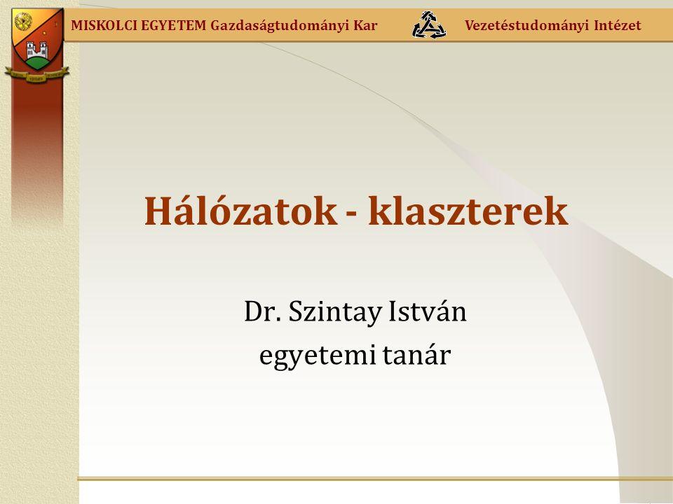 MISKOLCI EGYETEM Gazdaságtudományi Kar Vezetéstudományi Intézet Hálózatok - klaszterek Dr.