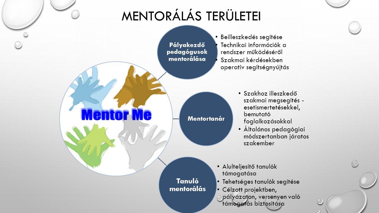DINAMIKUS MODELL JELLEG Mentorálás módszertani kézikönyve Szülői együttműködés kereteinek kidolgozása Életviteli és tehetség mentorálás egymás támogatásáért Mentorpedagógus rendszerszintű elhelyezése Kaposvár-Somogy Megyei Tehetségsegítő Tanács külön tagozata