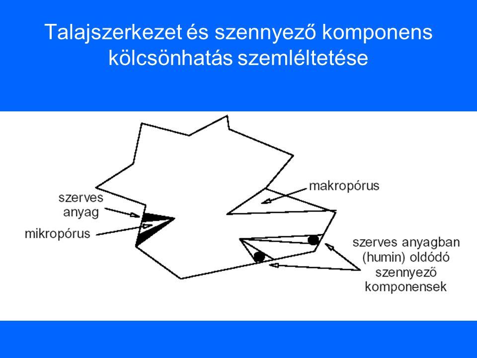 Talajszerkezet és szennyező komponens kölcsönhatás szemléltetése