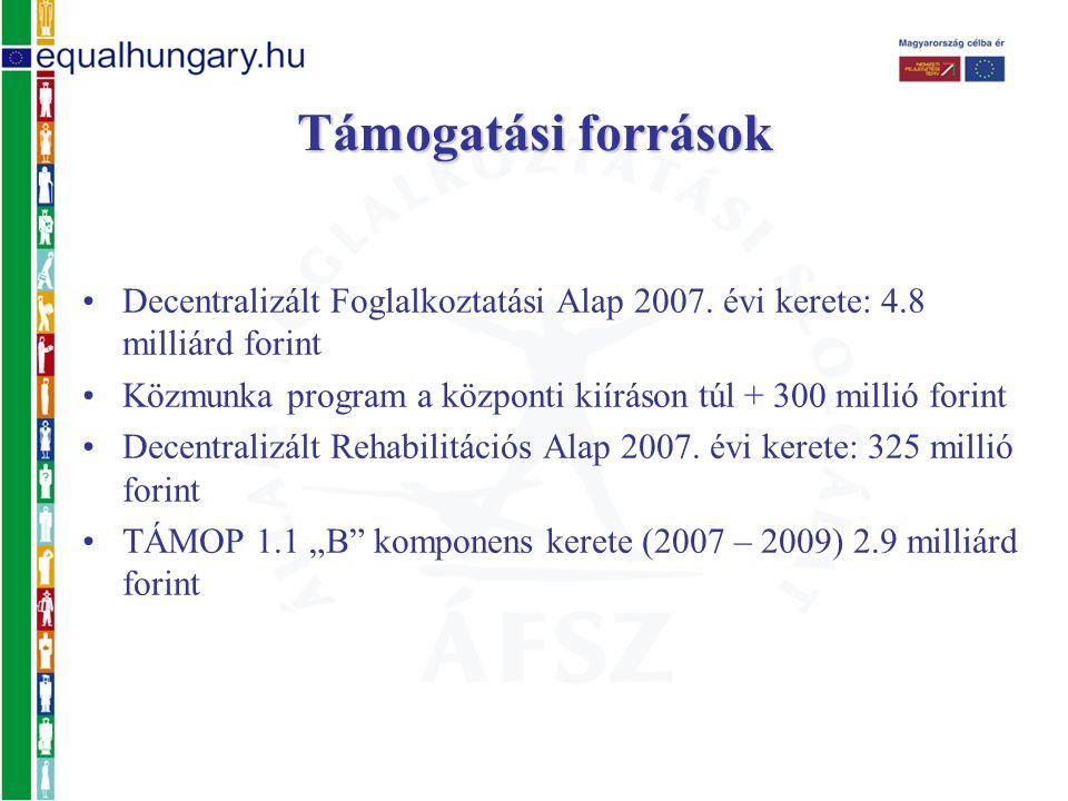 Decentralizált Foglalkoztatási Alap 2007. évi kerete: 4.8 milliárd forint Közmunka program a központi kiíráson túl + 300 millió forint Decentralizált