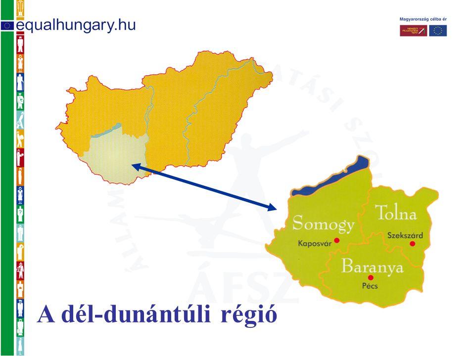 Terület: 14.169 km2 Népesség: 966.000 fő Kistérségek száma: 24 Települési önkormányzatok: 655 Kisebbségi önkormányzatok: 275 A dél-dunántúli régió 8 kirendeltség 22.968 reg.