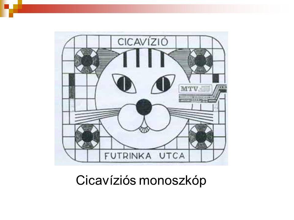 Cicavíziós monoszkóp
