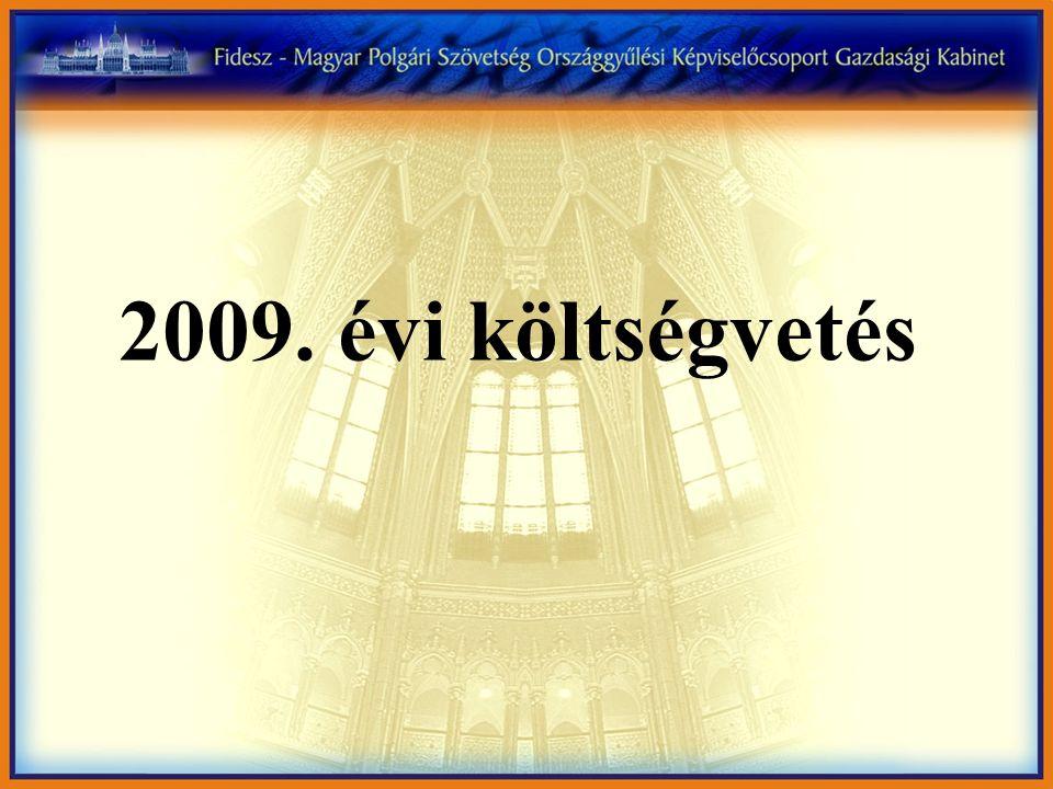 2009. évi költségvetés