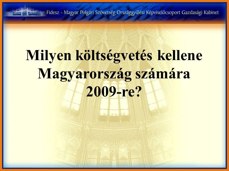 Milyen költségvetés kellene Magyarország számára 2009-re?
