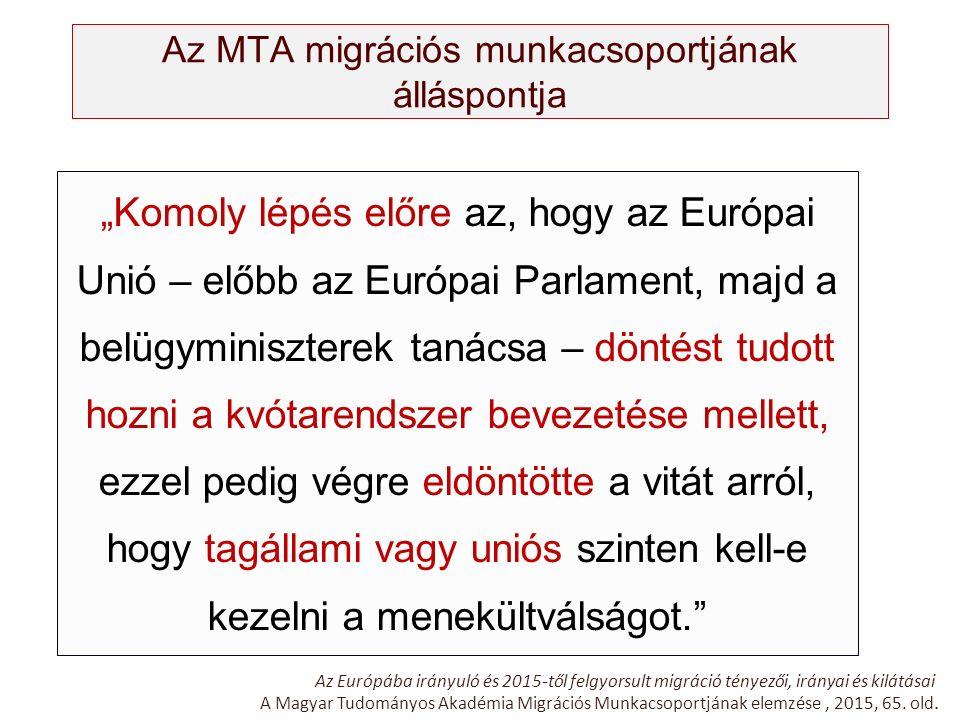 """Az MTA migrációs munkacsoportjának álláspontja """"Komoly lépés előre az, hogy az Európai Unió – előbb az Európai Parlament, majd a belügyminiszterek tan"""