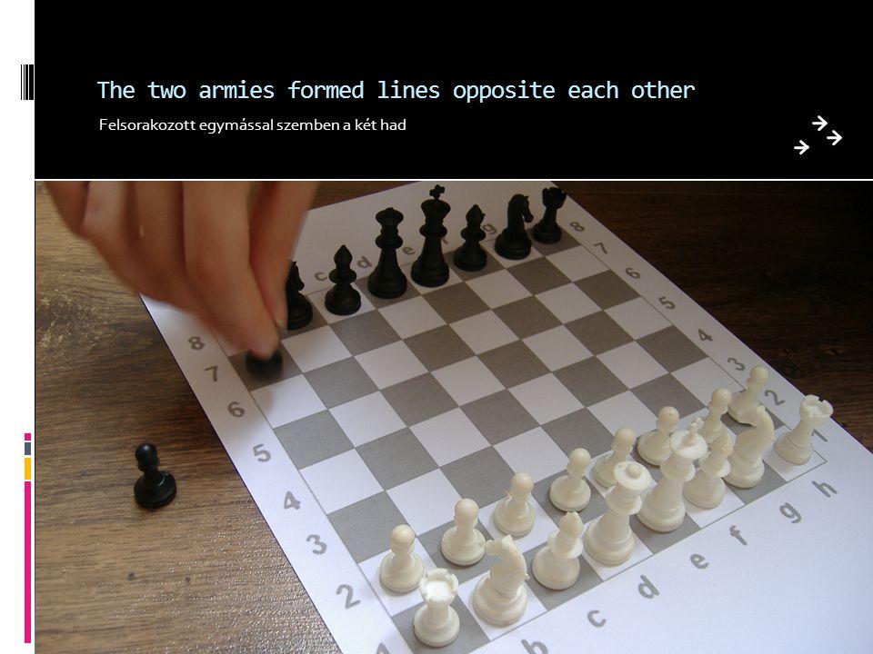 The two armies formed lines opposite each other Felsorakozott egymással szemben a két had