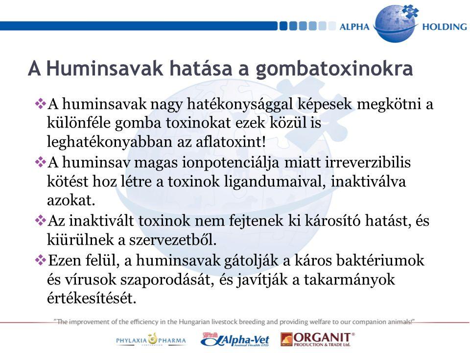 A Huminsavak hatása a gombatoxinokra  A huminsavak nagy hatékonysággal képesek megkötni a különféle gomba toxinokat ezek közül is leghatékonyabban az aflatoxint.