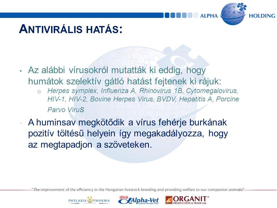 A NTIVIRÁLIS HATÁS : Az alábbi vírusokról mutatták ki eddig, hogy humátok szelektív gátló hatást fejtenek ki rájuk: o Herpes symplex, Influenza A, Rhinovirus 1B, Cytomegalovirus, HIV-1, HIV-2, Bovine Herpes Virus, BVDV, Hepatitis A, Porcine Parvo Viru s A huminsav megkötődik a vírus fehérje burkának pozitív töltésű helyein így megakadályozza, hogy az megtapadjon a szöveteken.
