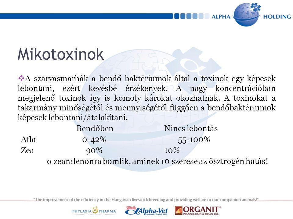 Aflatoxin  Az Aflatoxin azért különlegesebb a többi társánál, mert az emésztő rendszer nyálkahártyáján felszívódik,  bekerül a véráramba és amellett hogy az állat máját károsítja, (Afla B1)  a vérrel a tőgybe és a tejbe is eljut.