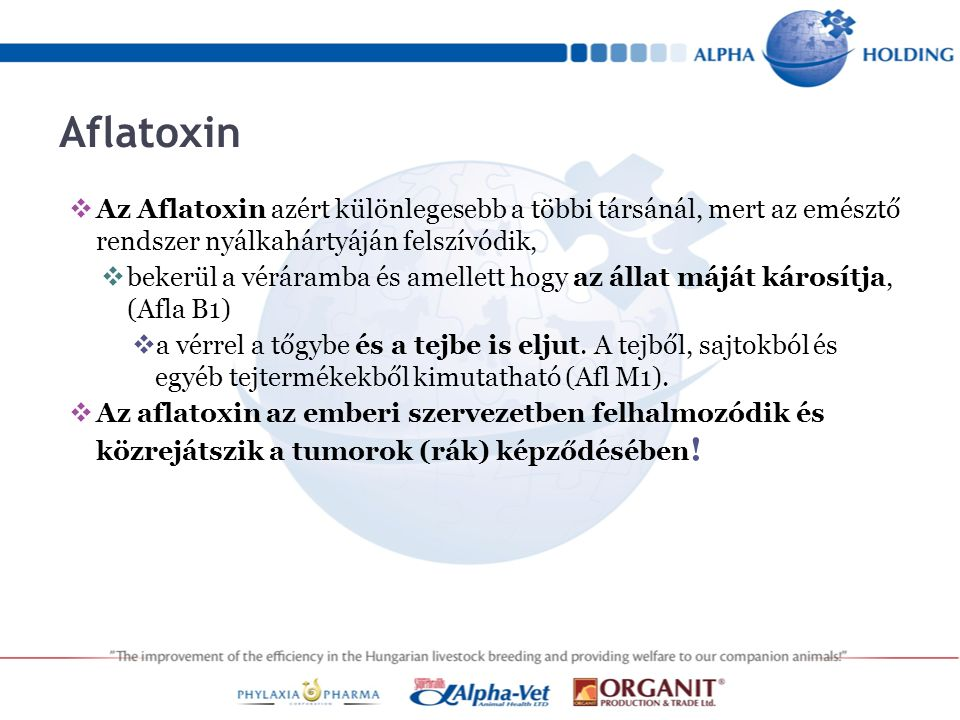 Aflatoxin  Az Aflatoxin azért különlegesebb a többi társánál, mert az emésztő rendszer nyálkahártyáján felszívódik,  bekerül a véráramba és amellett