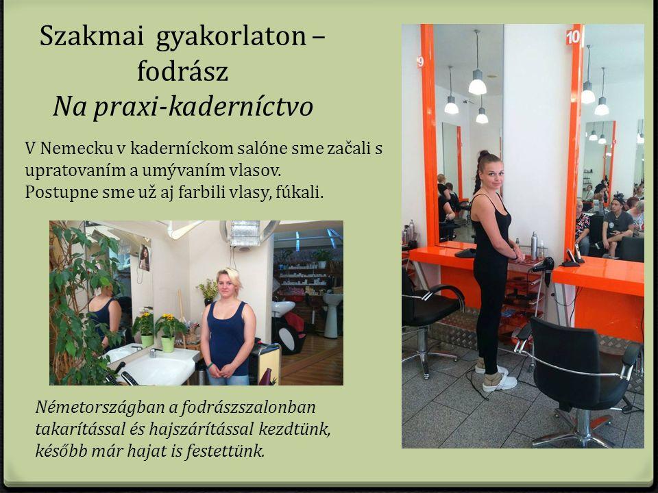 Szakmai gyakorlaton – fodrász Na praxi-kaderníctvo V Nemecku v kaderníckom salóne sme začali s upratovaním a umývaním vlasov.