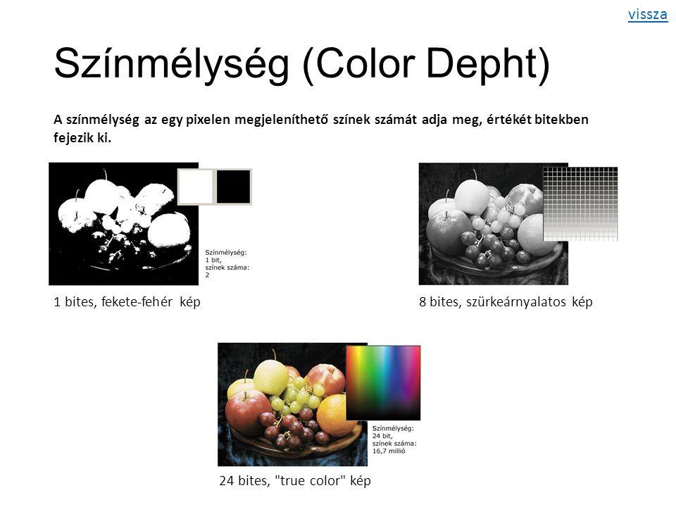 Színmélység (Color Depht) A színmélység az egy pixelen megjeleníthető színek számát adja meg, értékét bitekben fejezik ki.